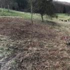 Landschaftspflege-2020_02-B2